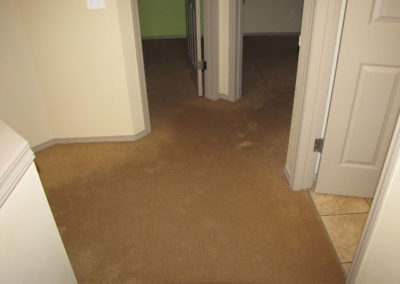 water damage on flooded carpet residential property