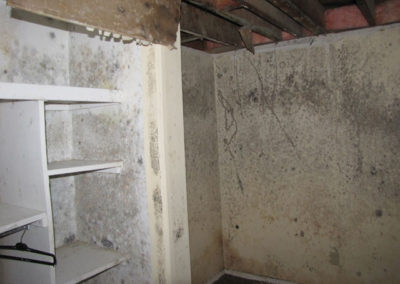 property damage on walls and ceiling from mold asbestos
