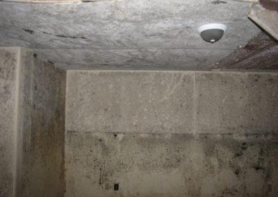 mold-water-damage-basement