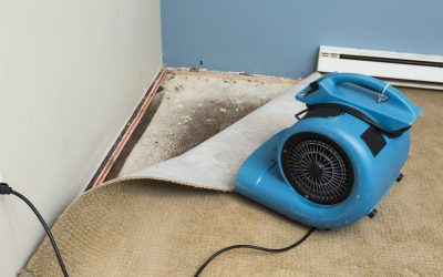 Will air dehumidifiers and air flow fans help dry out my property after water damage or flooding has occurred?